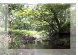 長居植物園写真